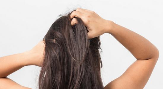 Brosse à cheveux professionnelle, Matériel de coiffure, Fer à lisser